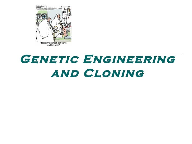 cloning genetic engineering New report to gain the most up-to-date knowledge  on the production and use of cloned and genetically-engineered animals, compassion in world farming.