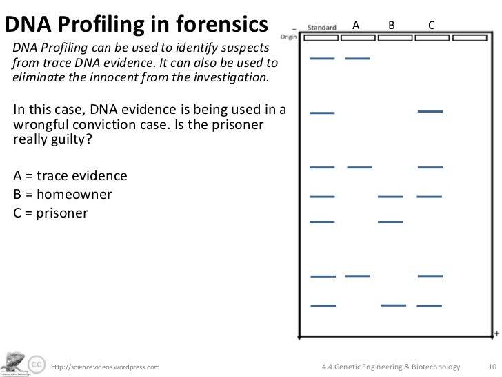 Genetic Engineering and Biotechnology – Genetic Engineering Worksheet