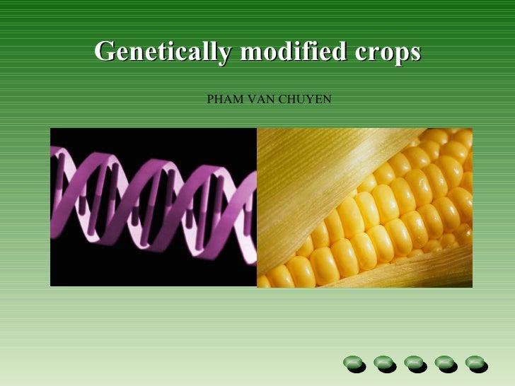 Genetic modified-crops-1228274479307533-9 Slide 3