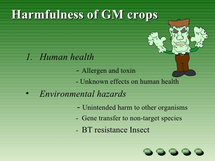 the harmfulness of genetically modified organisms Creation of genetically modified organisms which contain genetic  as potential harmfulness of genetically modified organisms to the environment and human.