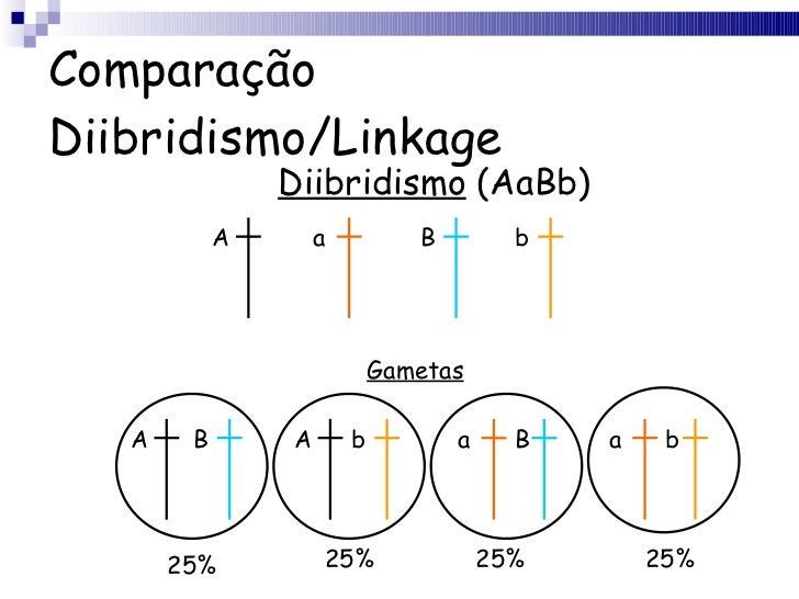 Comparação Diibridismo/Linkage Diibridismo  (AaBb) A a B b Gametas A B A b a B a b 25% 25% 25% 25%