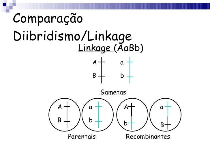 Comparação Diibridismo/Linkage Linkage  (AaBb) A B a b Gametas A B a b A b a B Parentais Recombinantes