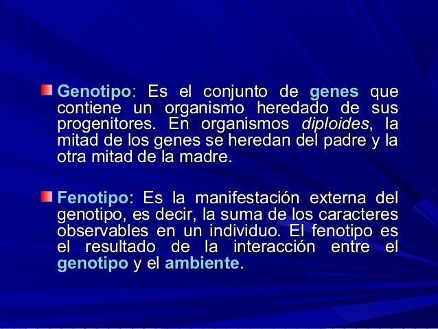 GenotipoGenotipo:: Es el conjunto deEs el conjunto de genesgenes queque contiene un organismo heredado de suscontiene un o...