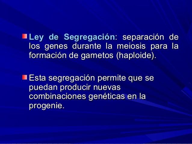 Ley de SegregaciónLey de Segregación: separación de: separación de los genes durante la meiosis para lalos genes durante l...
