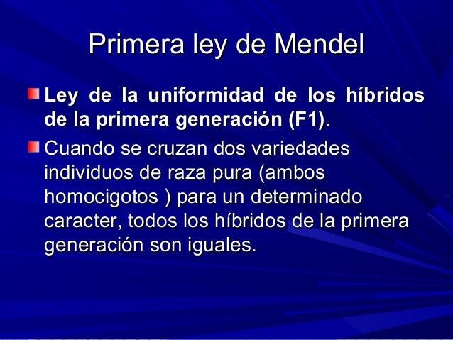 Primera ley de MendelPrimera ley de Mendel Ley de la uniformidad de los híbridosLey de la uniformidad de los híbridos de l...