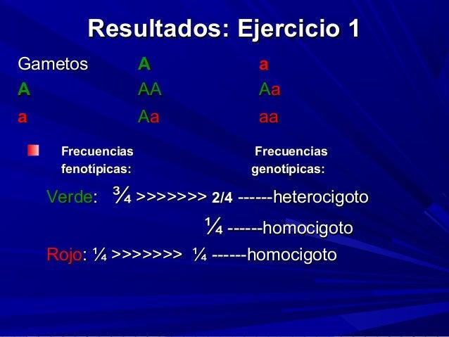 Resultados: Ejercicio 1Resultados: Ejercicio 1 FrecuenciasFrecuencias FrecuenciasFrecuencias fenotípicas:fenotípicas: geno...
