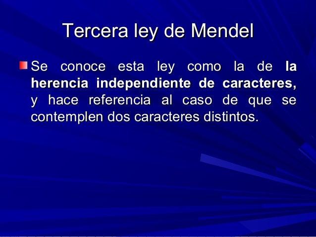 Tercera ley de MendelTercera ley de Mendel Se conoce esta ley como la deSe conoce esta ley como la de lala herencia indepe...
