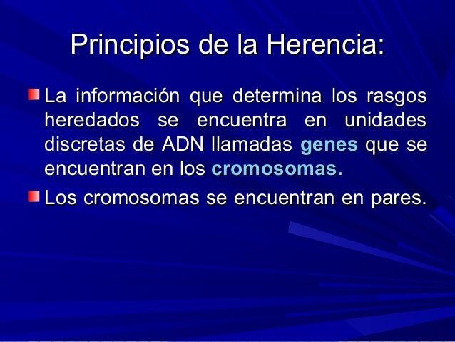 Principios de la Herencia:Principios de la Herencia: La información que determina los rasgosLa información que determina l...