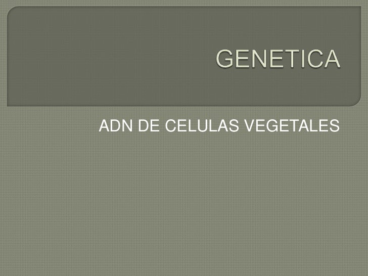 Genetica Slide 2
