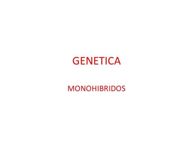GENETICA MONOHIBRIDOS