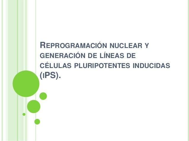 Celulas Pluripotentes Inducidas Pdf