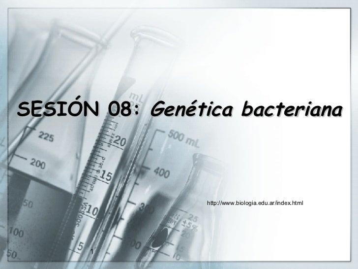 SESIÓN 08:  Genética bacteriana http://www.biologia.edu.ar/index.html