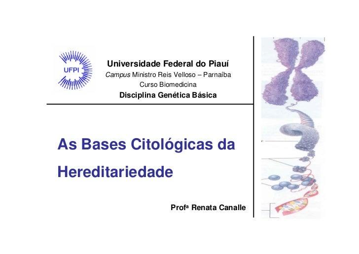 Universidade Federal do Piauí       Campus Ministro Reis Velloso – Parnaíba                Curso Biomedicina           Dis...