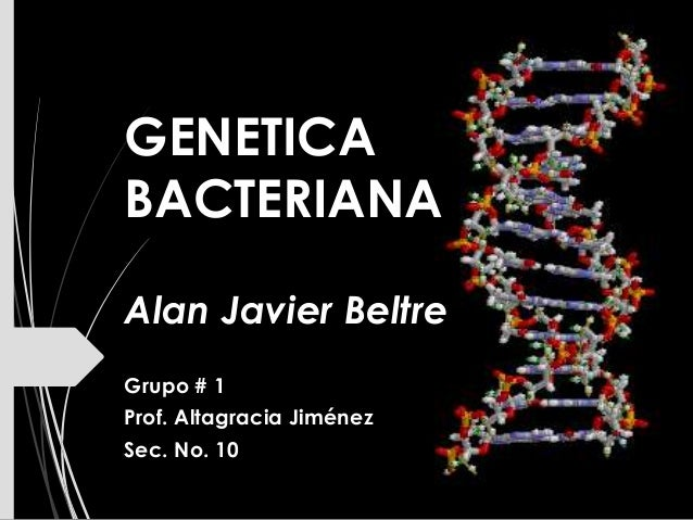 GENETICA BACTERIANA Alan Javier Beltre Grupo # 1 Prof. Altagracia Jiménez Sec. No. 10
