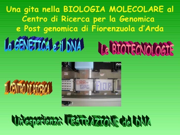 Una gita nella BIOLOGIA MOLECOLARE al   Centro di Ricerca per la Genomica  e Post genomica di Fiorenzuola d'Arda