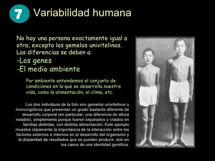 Variabilidad humana <ul><li>No hay una persona exactamente igual a otra, excepto los gemelos univitelinos. Las diferencias...