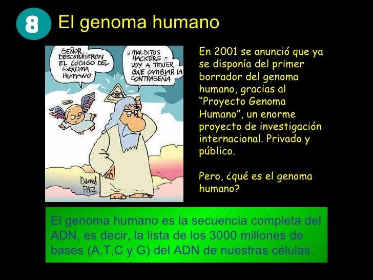 El genoma humano El genoma humano es la secuencia completa del ADN, es decir, la lista de los 3000 millones de bases (A,T,...