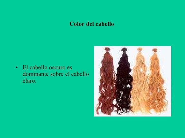 Color de pelo herencia