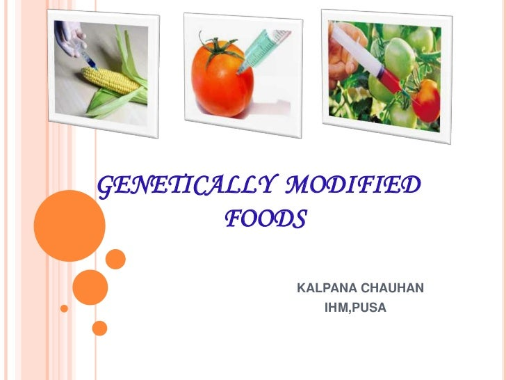 modified food essay Genetically modified organisms have gradually become second nature in the us tomatoes, corns, berries, beans, it might surprise you that how many foods you are eating contains genetically modified ingredients now scientists have the technology to insert powerful genes into organisms that does.