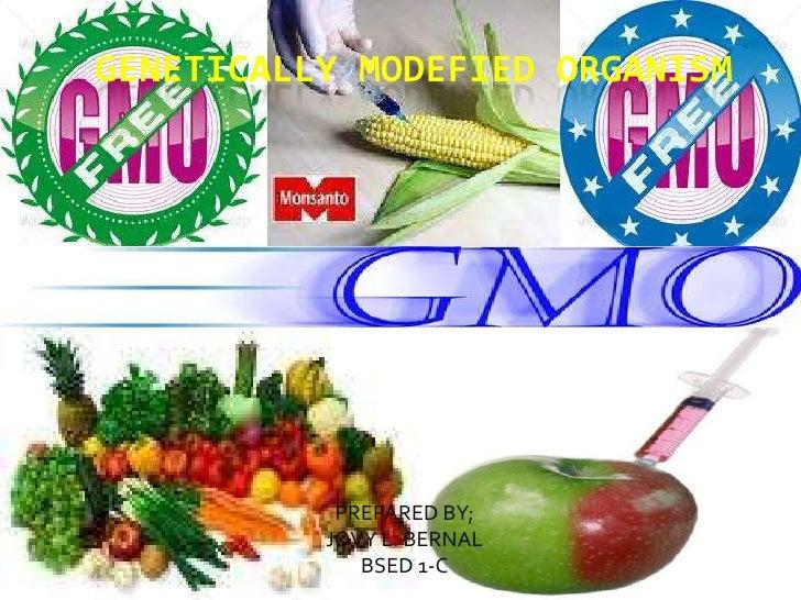 GENETICALLY MODEFIED ORGANISM<br />PREPARED BY;<br />JOVY L. BERNAL<br />BSED 1-C<br />