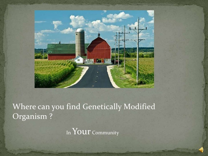 Green Party Genetically Modified Foods