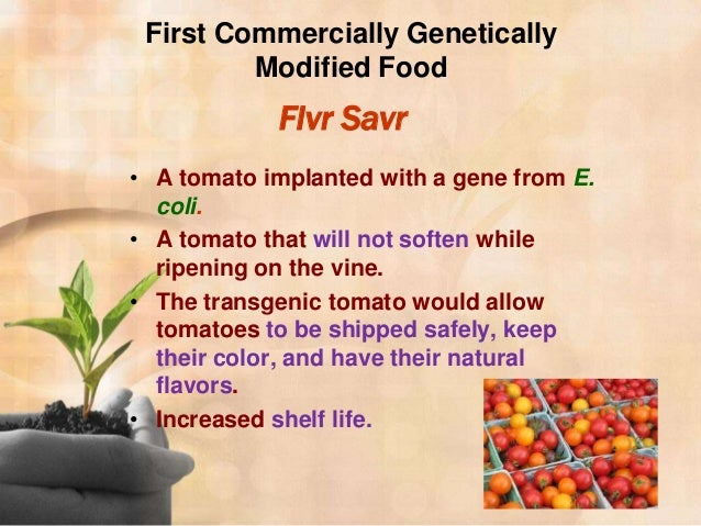 genetically modified foods what makes it Genetically modified organisms -- plants and animals whose genes have been changed by scientists -- aren't just thought over, they're fought over gmos often make news related to the environment .