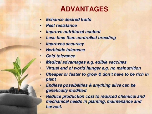 gmo advantages essay 2012-11-11  short essay on genetically modified crop  our mission is to provide an online platform to help students to discuss anything and everything about essay.