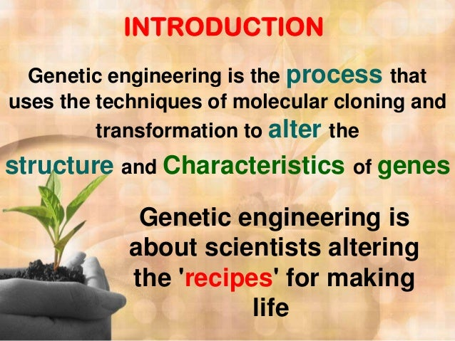 Genetic engineering advantages essays