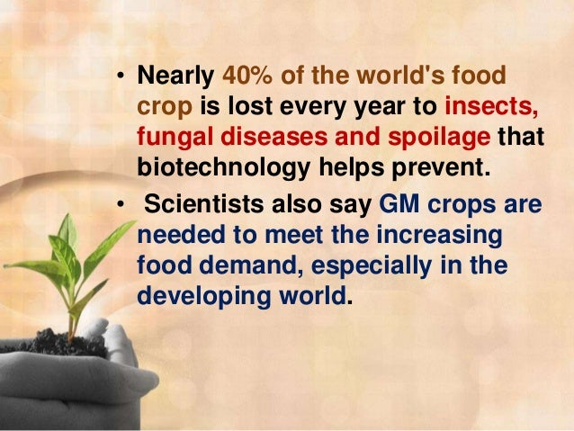 genetically modified food world hunger essay The hope that gmo foods might bring solutions to malnutrition and world hunger was never  if we don't get over our queasiness about eating genetically modified food, kids in the third world.