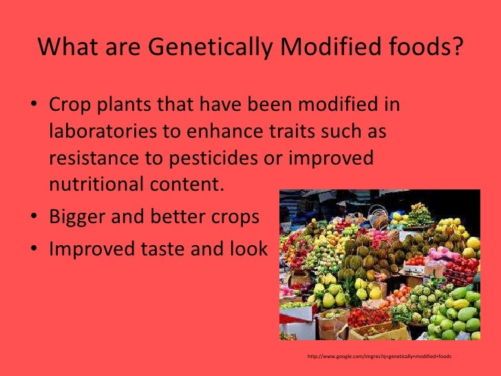genetically modified foods 3 essay The pros and cons of genetically modified organisms (foods) argumentative essay gmos, or genetically modified organisms, are plants or animals that have been genetically engineered with dna from bacteria, viruses or other plants and animals.