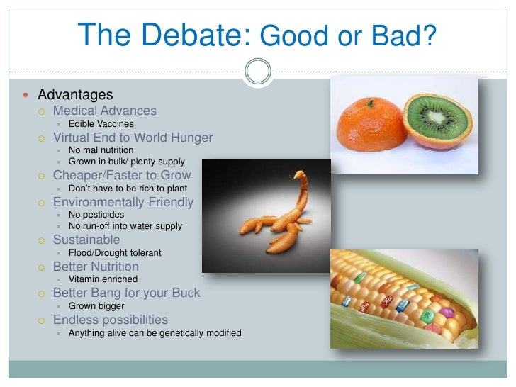 genetically modified foods is it good What you should know about genetically modified foods as you can see in the image below, a us poll showed that 60% of respondents believed they had never eaten a gm food this is unlikely, considering gm foods are estimated to be in nearly 70% of all products found in typical us grocery stores 80% of all corn and 92% of all soybeans grown .