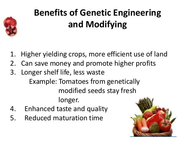 the benefits of genetically modified crops for food Gm foods are developed – and marketed – because there is some perceived  advantage either to the producer or consumer of these foods this is meant to.