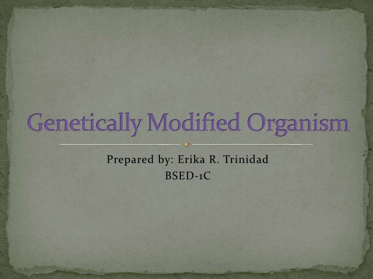 Prepared by: Erika R. Trinidad<br />BSED-1C<br />Genetically Modified Organism<br />