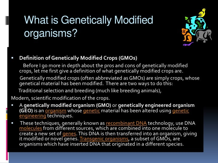 genetically modified organism 12 essay There's no one type of genetically modified organism — genetic engineering is a  tool that can be used for a variety of purposes most of the.