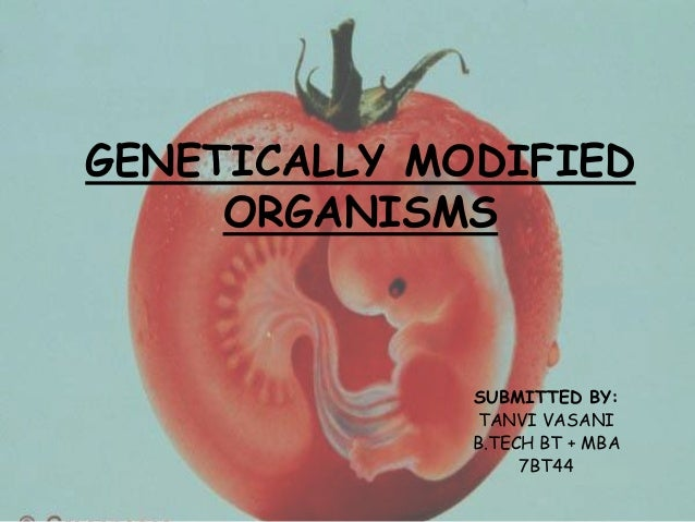GENETICALLY MODIFIED ORGANISMS SUBMITTED BY: TANVI VASANI B.TECH BT + MBA 7BT44