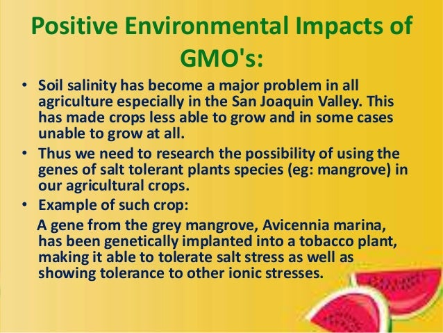 the positive effect of genetically modified organisms A genetically modified organism, or gmo, is an organism that has had its dna altered or modified in some way through genetic engineering in most cases, gmos have been altered with dna from another organism, be it a bacterium, plant, virus or animal these organisms are sometimes referred to as.