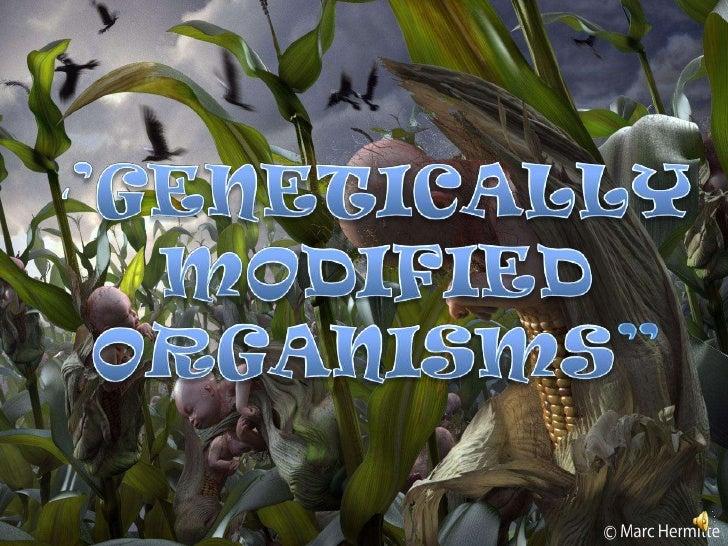 "''GENETICALLY MODIFIED ORGANISMS""<br />"