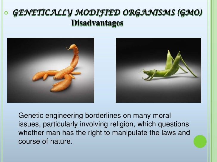 Genetically modified crops advantages and disadvantages