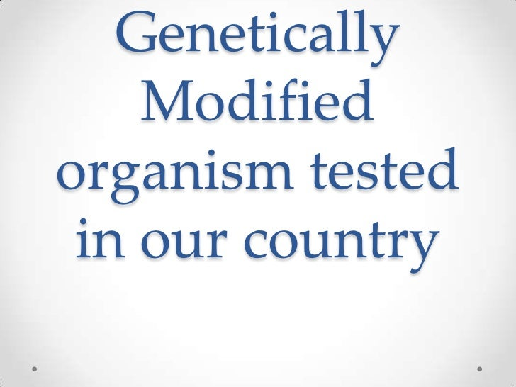 Genetically    Modifiedorganism tested in our country