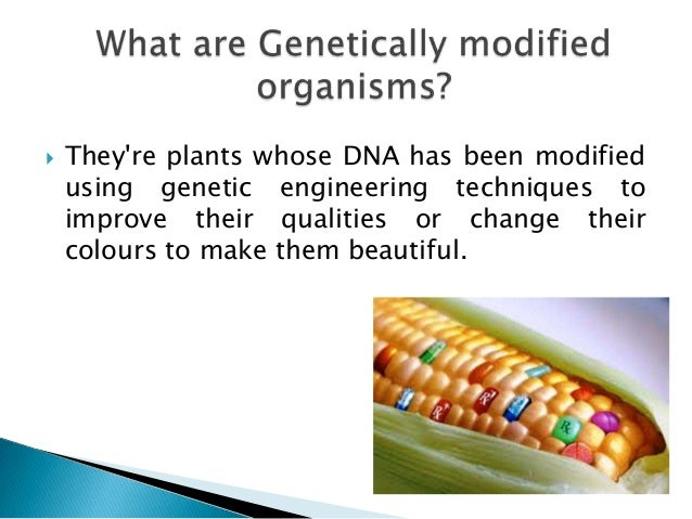 how to avoid genetically modified plants