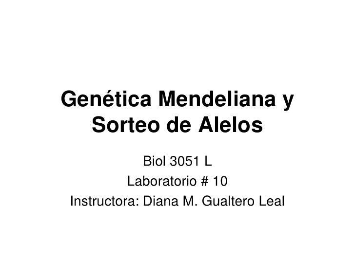 Genética Mendeliana y Sorteo de Alelos<br />Biol 3051 L<br />Laboratorio # 10<br />Instructora: Diana M. Gualtero Leal<br />