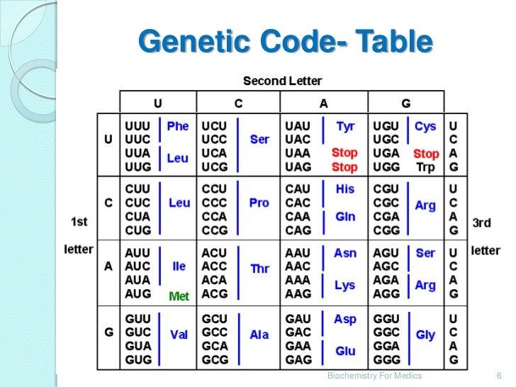 amazing Triplet Codon Table Part - 10: Genetic Code- Table Biochemistry For Medics 6 ...