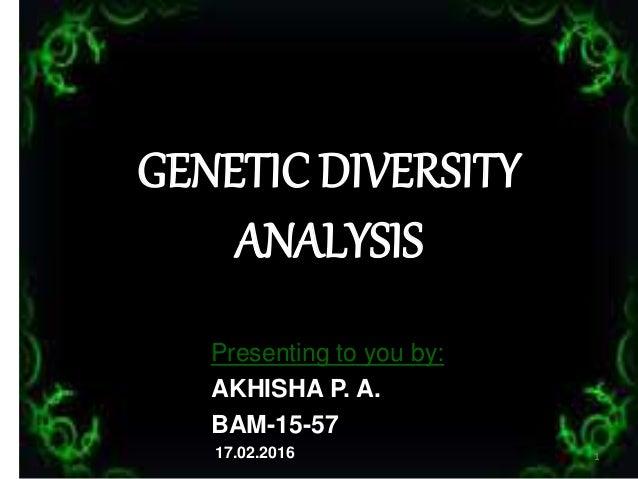 GENETIC DIVERSITY ANALYSIS Presenting to you by: AKHISHA P. A. BAM-15-57 17.02.2016 1