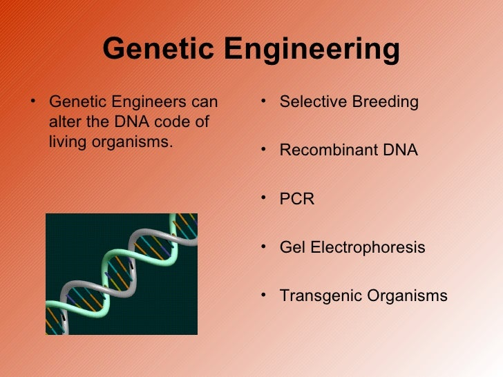 genetic engineering dna essay Genetic engineering is basically a laboratory technique that is used by many scientists to change and alter the dna of living beings dna, one can say is a blueprint of an.
