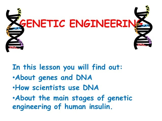 GENETIC ENGINEERING  In this lesson you will find out: •About genes and DNA •How scientists use DNA •About the main stages...
