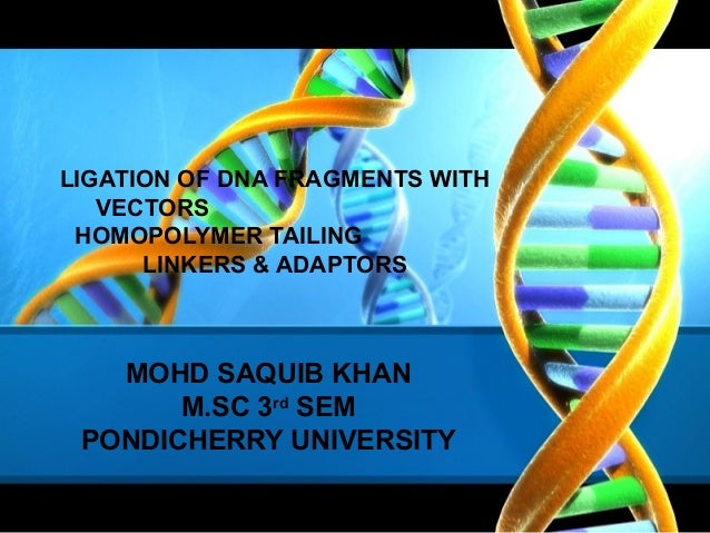 LIGATION OF DNA FRAGMENTS WITH VECTORS HOMOPOLYMER TAILING LINKERS & ADAPTORS  MOHD SAQUIB KHAN M.SC 3rd SEM PONDICHERRY U...