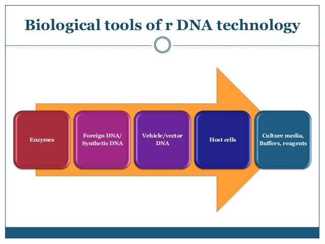 restriction enzymes and their application in recombinant dna technology