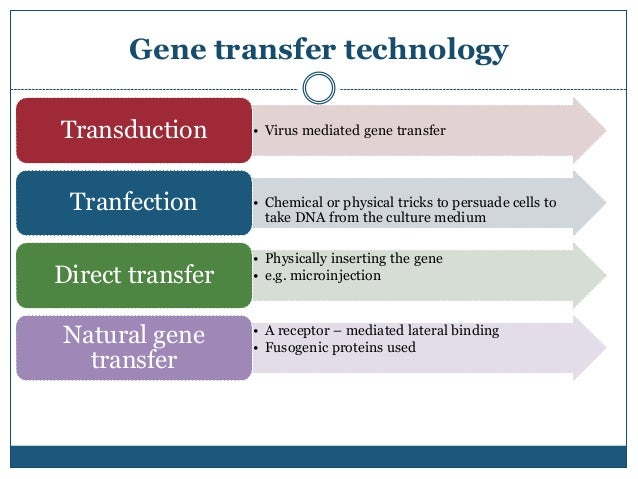 an introduction to the history of horizontal gene transmission Cultural evolutionary theory: how culture evolves and  and horizontal transmission can occur  of human history, the study of cultural transmission and.