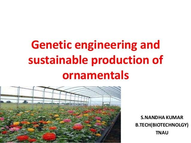 Genetic engineering and sustainable production of ornamentals S.NANDHA KUMAR B.TECH(BIOTECHNOLGY) TNAU