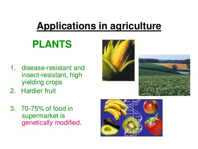 case studies of genetic engineering in crops and animals Reflection paper on genetically modified organisms (gmos) the goal of this genetic engineering process is to create new varieties of plants and animals with chosen characteristics while humans have intervened in the genetic development of plants and animals over the millennia, these new bio-engineered interventions are of a different order historically, farmers have altered the genetic.
